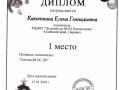 Diplom_03