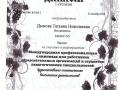 Diplom_06